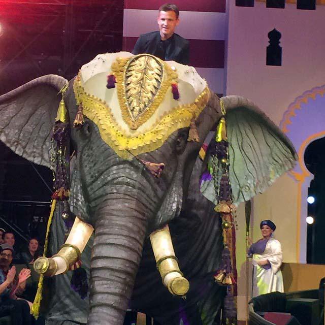 Rob Dyrdek came on an elephant for his engagement