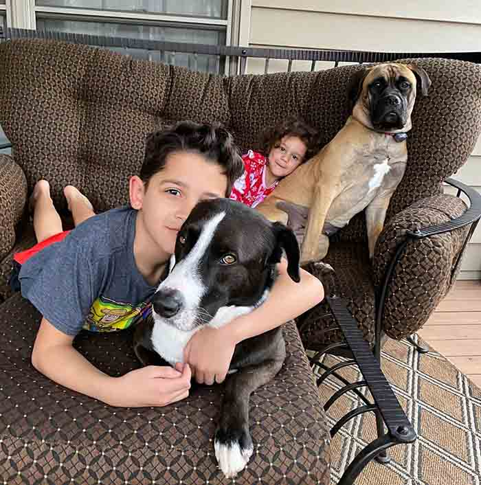 Photo of Kim Kassler's children and her dogs.